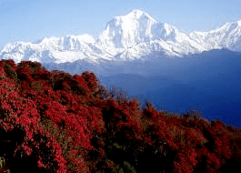 best trekking seasons picture of Nepal